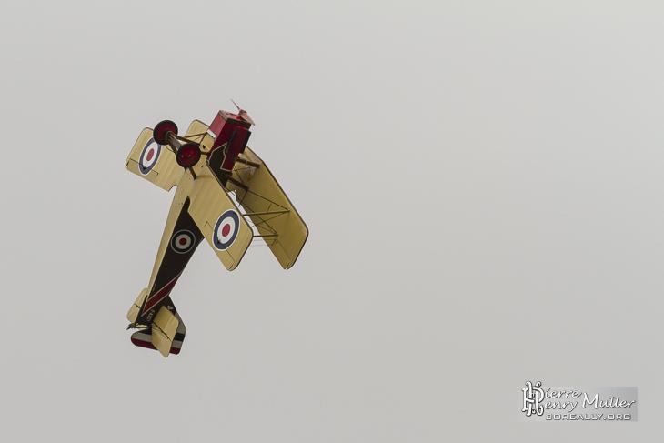 RAF SE5 en remontée au Bourget