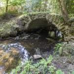 Pont en pierre au dessus d'une rivière de la forêt de Rambouillet