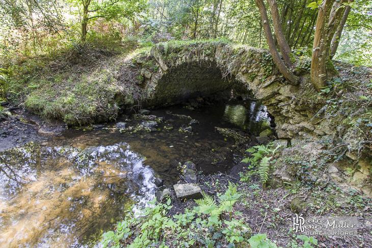 pont en pierre au dessus d 39 une rivi re de la for t de rambouillet boreally. Black Bedroom Furniture Sets. Home Design Ideas