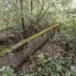 Ligne d'essai de Gometz-la-Ville en pleine végétation