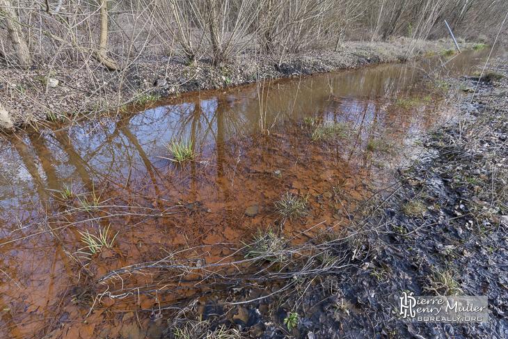 Pollution de l'eau sur le site du lavoir à charbon à Blayes-les-Mines / Carmaux