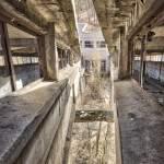 Vue entre les deux ponts transbordeur du lavoir à charbon de Blayes-les-Mines
