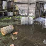 Ateliers inondés et tapis végétal à la mine de charbon de Cheratte