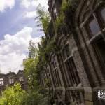 Ailes du château de Mesen reprises par la végétation