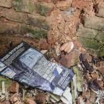 Article sur les bons maçons en face d'un mur mangé par la mérule et les moisissures