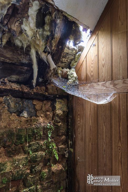 Toile d'arraignée sur mur en friche du château de Noisy en HDR