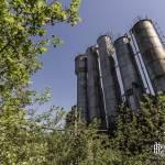 Silos repris par la végétation à la cokerie Anderlues