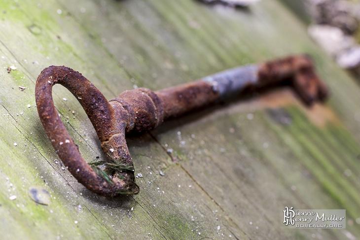 Clef rouillée sur panneau de bois