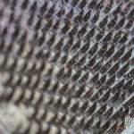 Détail des peignes industriels de la filature