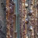Pilier métallique rouillé multicolor