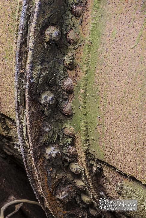 Boulons de serrage de joint de canalisation