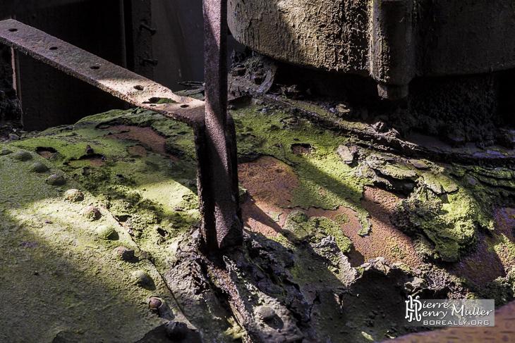 Ombre et lumière sur une canalisation rouillée recouverte de moisissure.