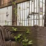 Réseau de tuyauterie et végétation
