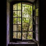 Fenêtre avec végétation au Fort du Haut Buc