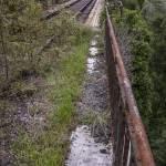 Végétation reprenant possession d'un pont abandonné de la ligne Pau-Canfranc