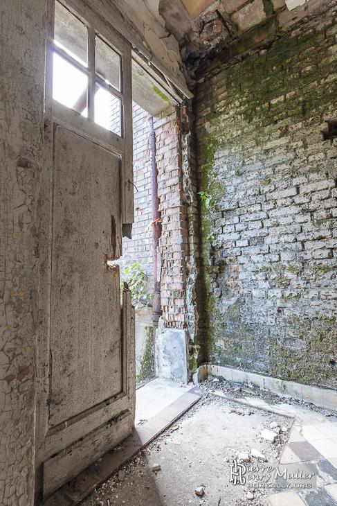 Développement de la mérule sur un mur du village abandonné
