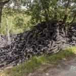 Végétation recouverte par la montagne de pneus