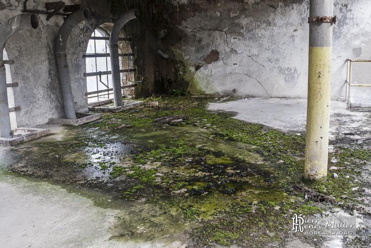 Sol couvert de mousse l 39 int rieur d 39 un b timent de la for L interieur d un chateau d eau