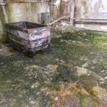 Wagon berline sur sol avec moisissure et mousse