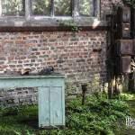 Bureau au milieu de la végétation devant un mur en brique et panneau électrique à l'usine SAFEA