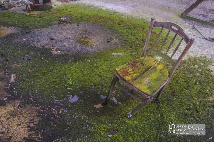 Chaise camouflée sur son tapis végétal à l'usine SAFEA