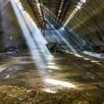 Faisceaux lumineux dans un hangar de stockage à l'usine SAFEA