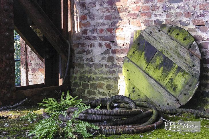 Mélange de végétation et d'industriel à l'usine SAFEA