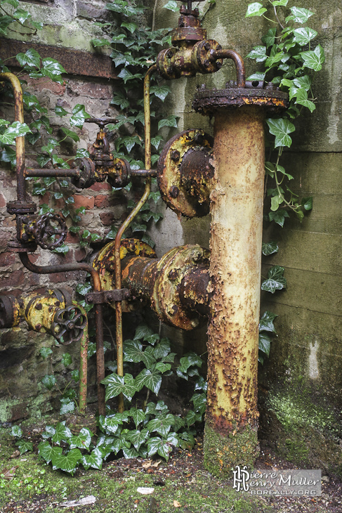 La nature reprend ses droits autour de ce système hydraulique rouillé à SAFEA