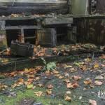 Rangement et plan de travail reprit par la végétation à l'usine SAFEA