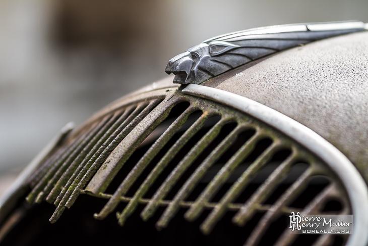 Tête de lion de la Peugeot 202 du médecin d'Oradour