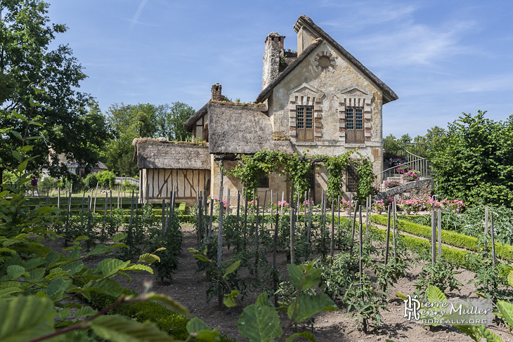 potager devant le moulin du hammeau de la reine au ch teau de versailles boreally. Black Bedroom Furniture Sets. Home Design Ideas