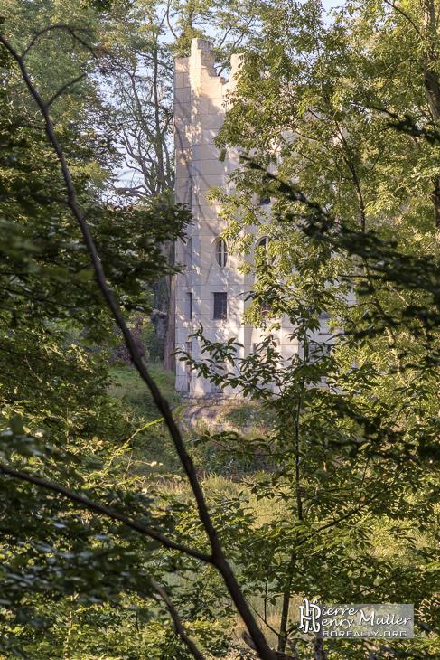 Colone détruite du Désert de Retz à Chambourcy au travers de la forêt