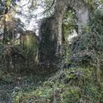 Intérieur de l'Église gothique en ruine au Désert de Retz à Chambourcy