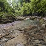 Petit bassin d'eau du ruisseau des Gorges de Kakuetta