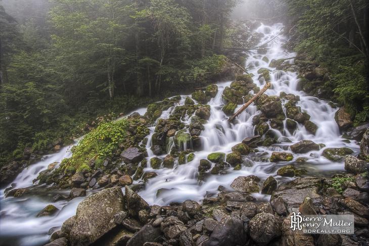 Cascade de montagne dans la brume en pause longue