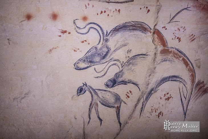 Dessin d'animaux préhistoriques
