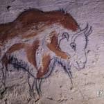 Dessin préhistorique de bison