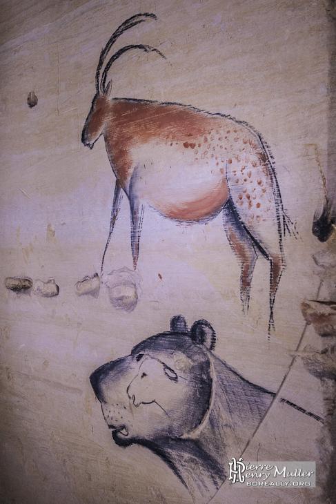 Dessins préhistoriques de gazelle et panthère