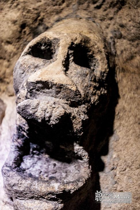 Tête de mort sculptée sur le mur de la salle Anschluss dans les catacombes de Paris
