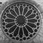 Rosace depuis l'extérieur de l'Eglise Saint Eustache en noir et blanc