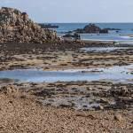 Côte Est de l'Ile de Bréhat à marée basse