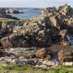 Côte rocheuse bretonne sculptée par la mer sur l'Ile de Bréhat