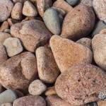 Galets de granite rose de grande taille à l'Ile de Bréhat