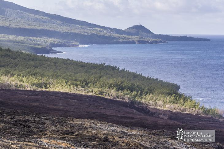 Cheminement des différentes coulées de lave vers l'océan à la Réunion