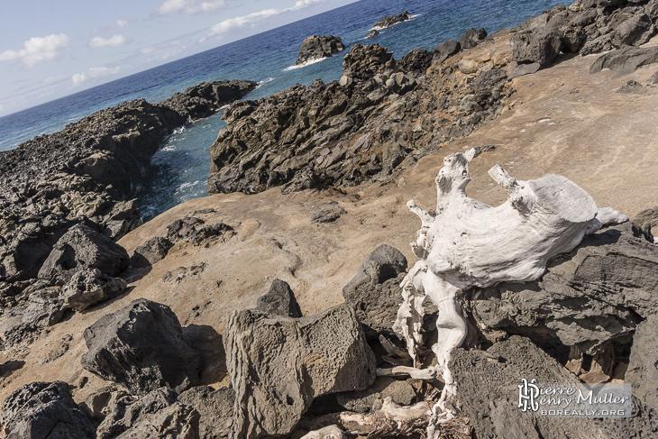 Côté basaltique à l'ouest de l'île de la Réunion