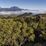 Panoramique vers le Piton des Neiges à la Réunion